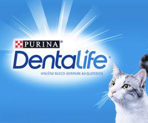 purina dentalife