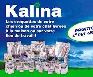 croquettes kalina