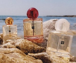 parfums blossoms
