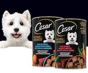 cesar natural goodness