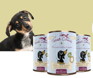 boîtes terra canis chiot