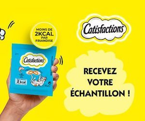 catisfaction friandises pour chat